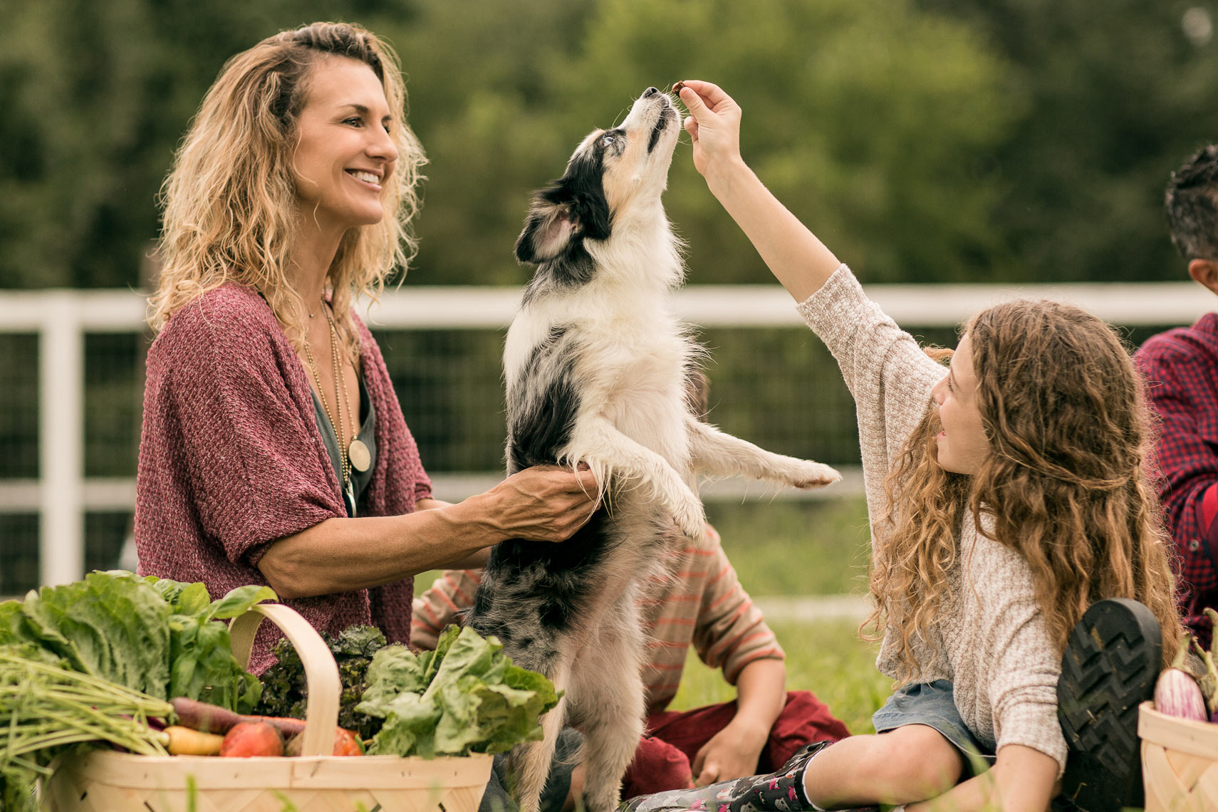 Lifestyle Photo of Family with Dog at Farmers Market by Jason Risner