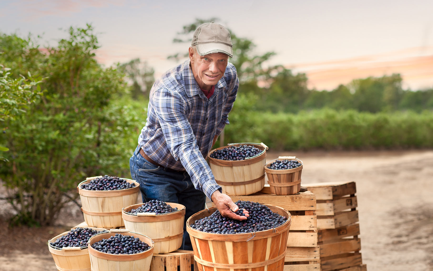 Jason Risner Product Photographer: HEB Blueberries in San Antonio Texas