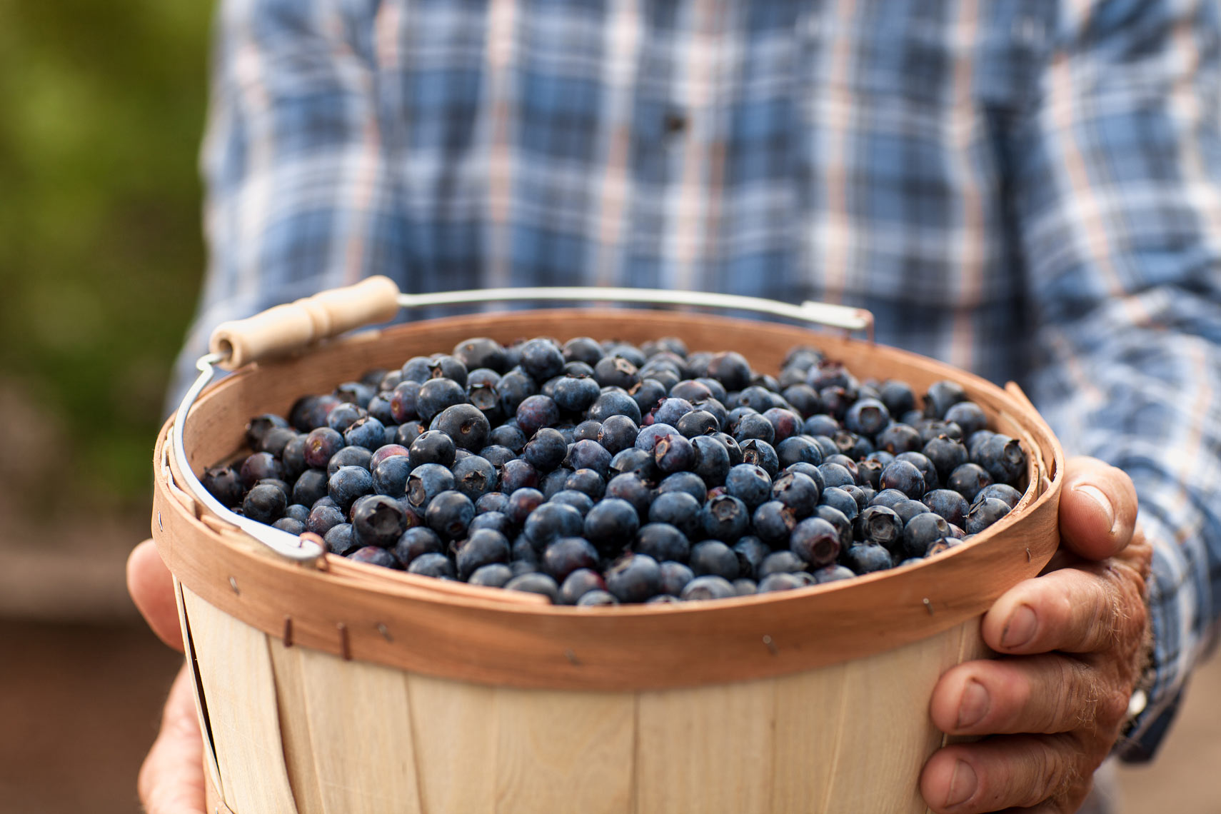 heb-blueberries-produce-department-jason-risner-photography-8692