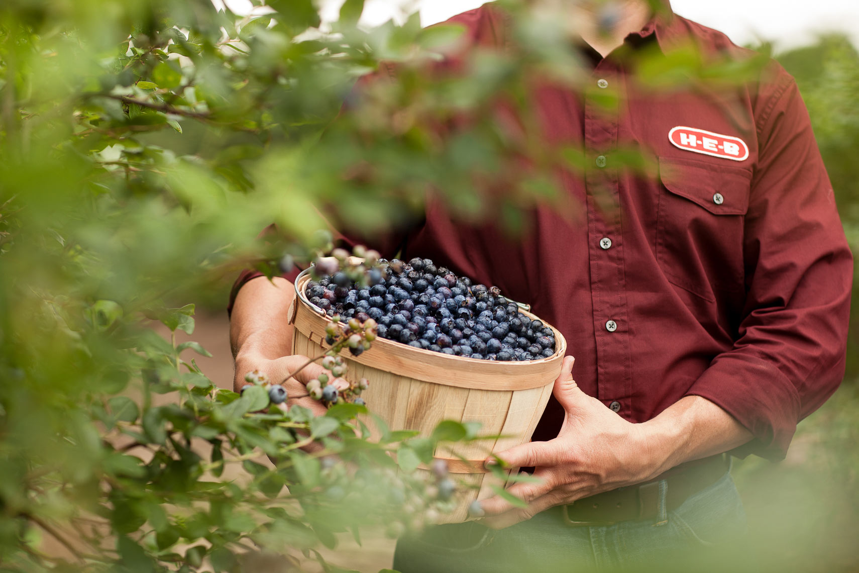 heb-blueberries-produce-department-jason-risner-photography-8947