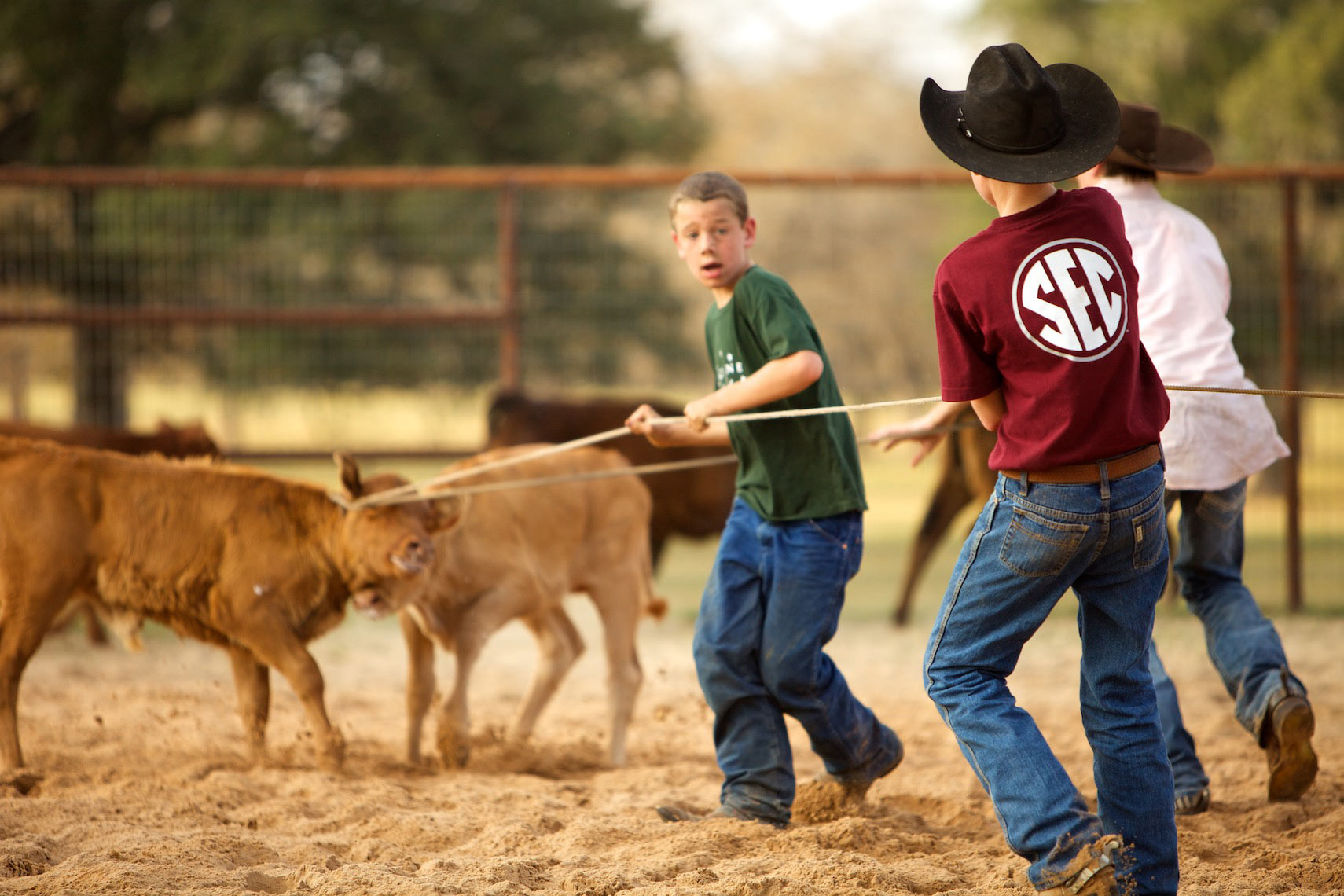 peeler-farms-ranch-texas-jason-risner-photography-6580