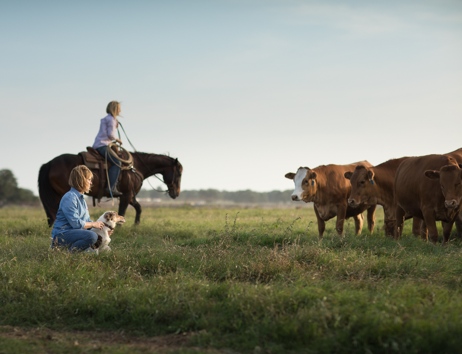 peeler-ranch-wagyu-beef-texas-jason-risner-photography-2609